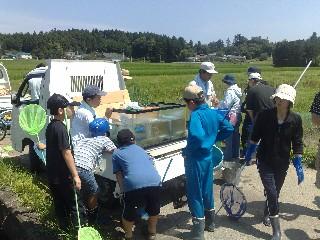 用水路の生き物調査(浪江町大字立野地域)