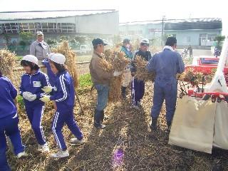 田んぼの学校「脱穀」